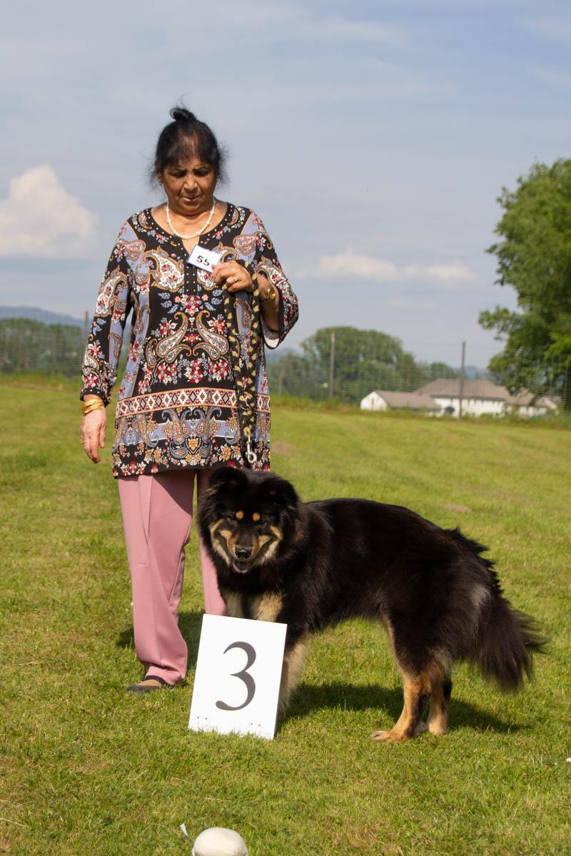 HÜNDIN - Championklasse 3. Platz