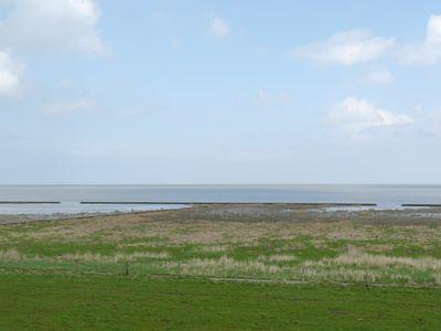 Salzwiese am Wattenmeer (Bildrechte: Kai Pagenkopf)