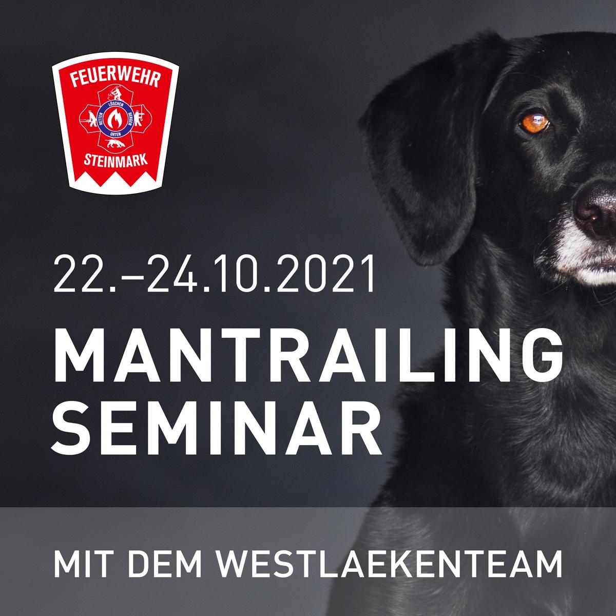 Mantrailing, Seminar, Feuerwehr, Steinmark, Einsteiger, Hund, Rettungshundestaffel, Personensuche