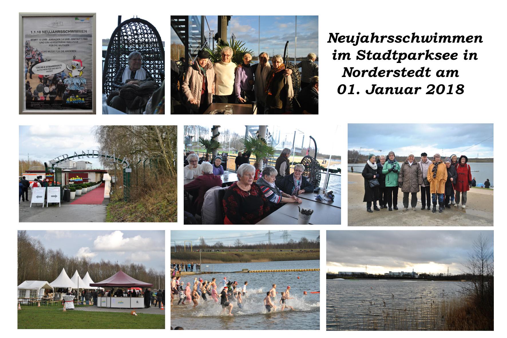 NeNo/Glashütte 2: Neujahrsschwimmen im Stadtpark Norderstedt, 01.01.2018 (Fotos: Tom)