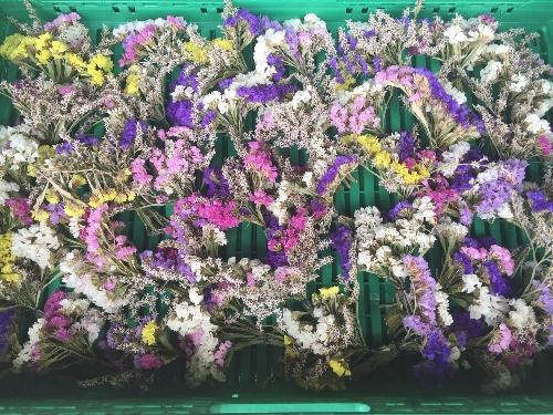 Fertige Blumensträusschen warten auf Ihren Zwiebelzopf