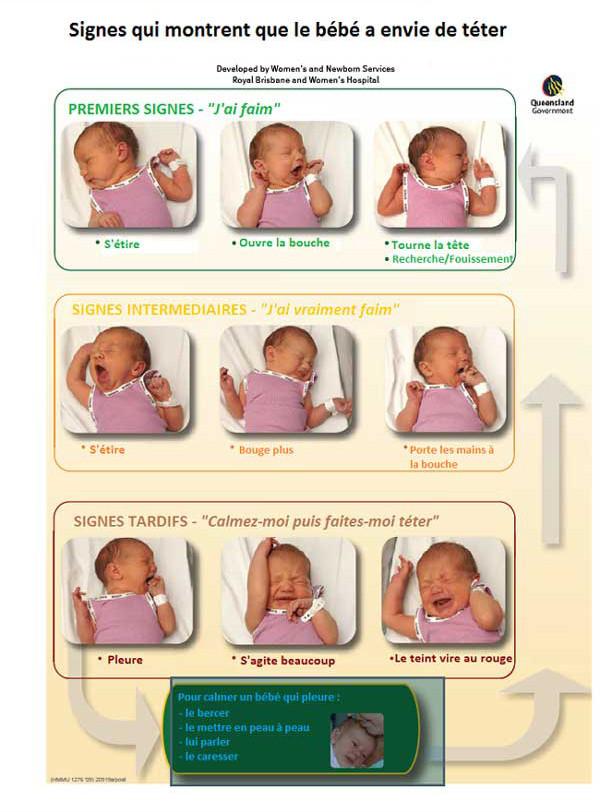 signes de faim bébé allaitement tétée