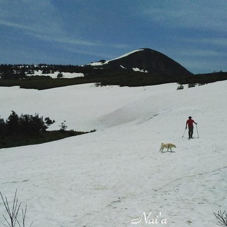 岩手山登山 雪山