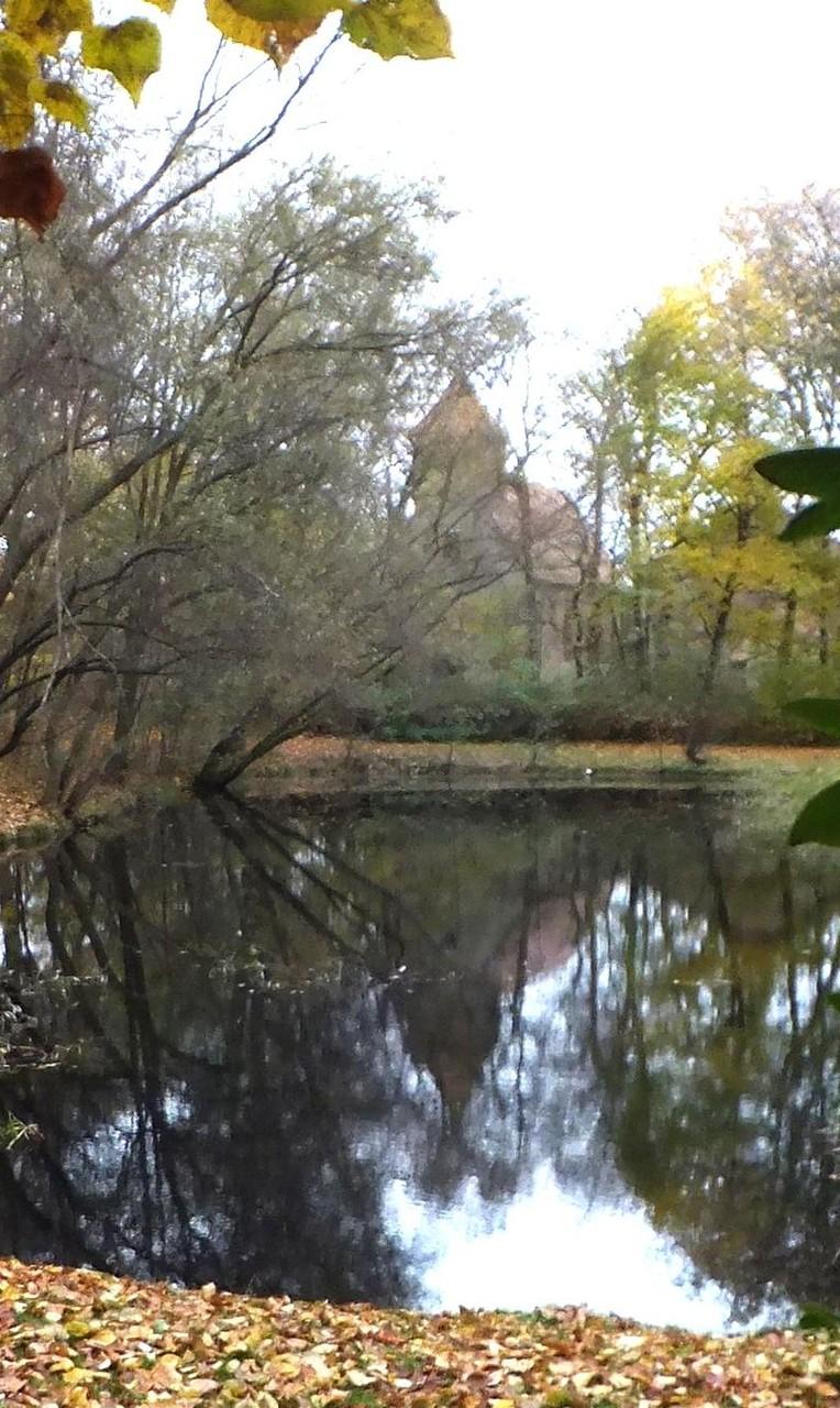 Falkenhain Minckwitz'sches Gut Park