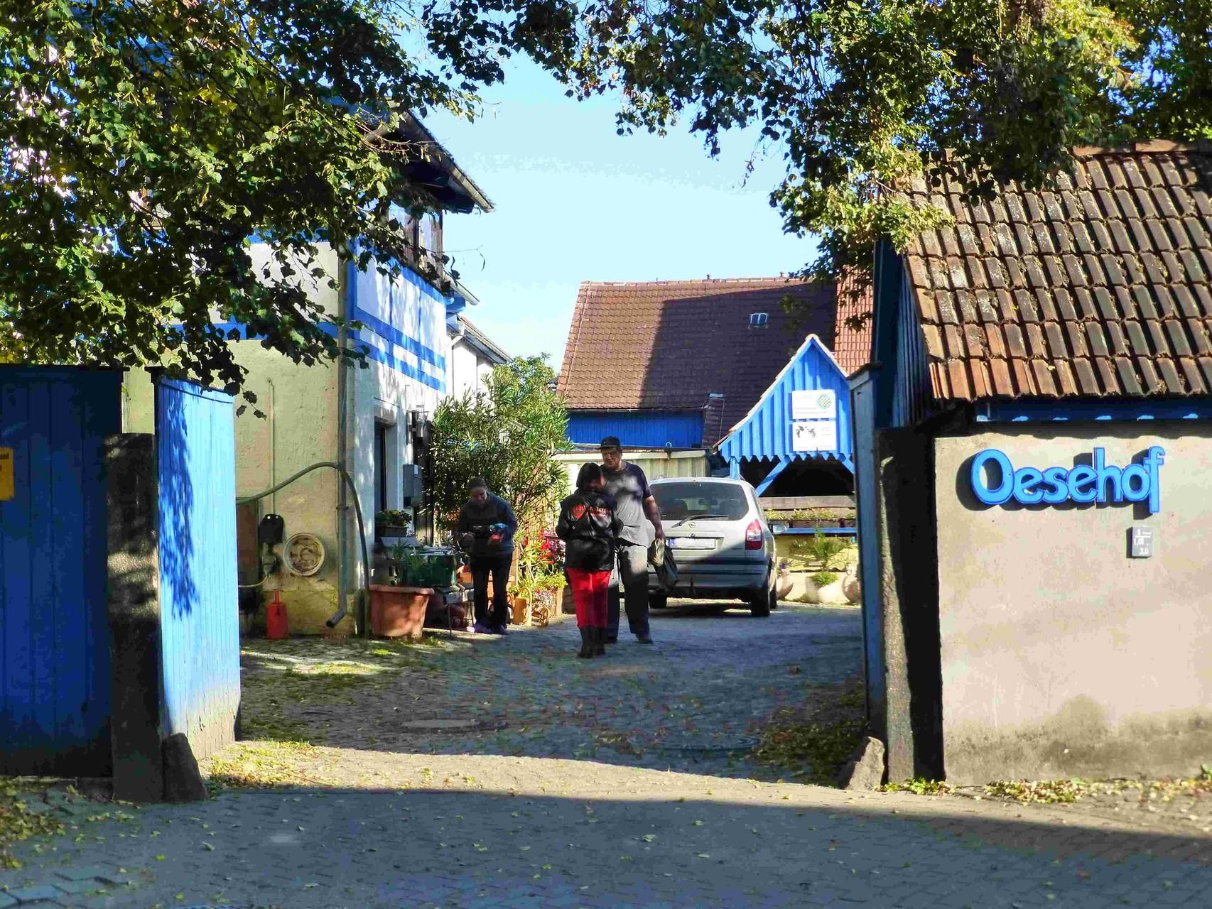 Oese-Hof, Tag der Einheit - 3. Oktober 2015.  9:30:   Interview-Termin mit Jung-Bauer Karl Oese