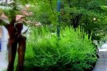 7月の宝塚花の道は濃い緑の中。ブロンズ像を囲むローズマリーの植え込みも緑を増しています。