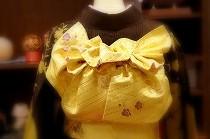振袖帯結びのお稽古中。黄色い帯が鮮やかです。