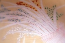 洗い朱の地色に、実りの秋を象徴する稲穂を描いた絽の染め帯です。