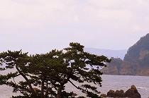 兵庫県城崎温泉にて。日本海の風景。