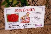 宝塚「花の道」のベルサイユのばらの由来を記した立札