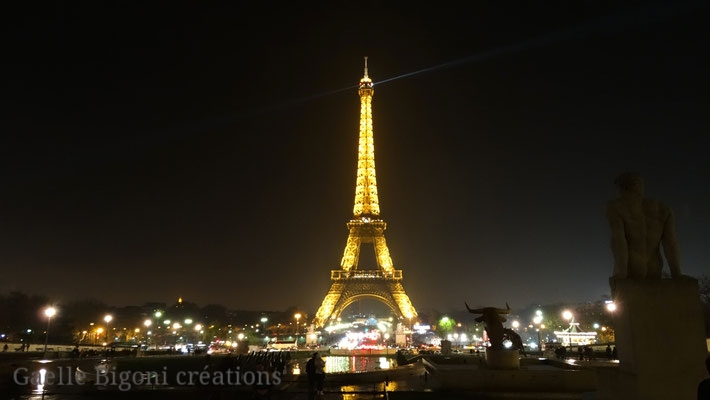 Paris, France, Novembre 2014