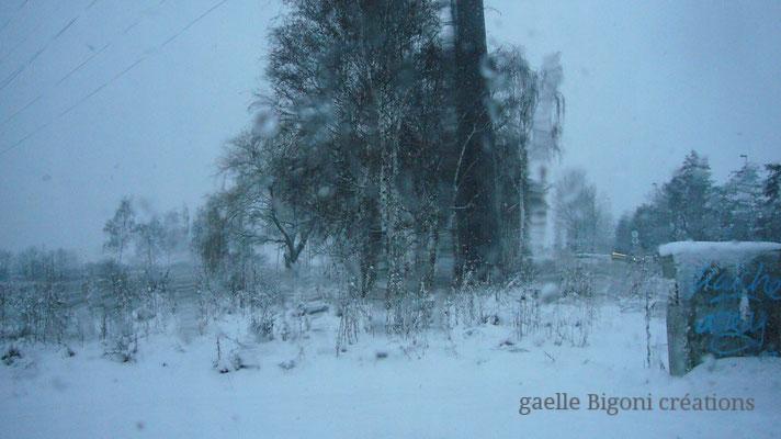 Roncq, france, Decembre 2010