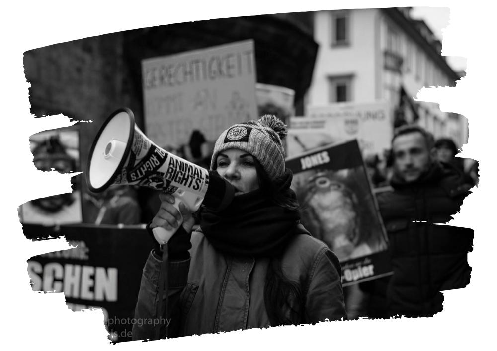 Sandy P.Peng Aktivismus
