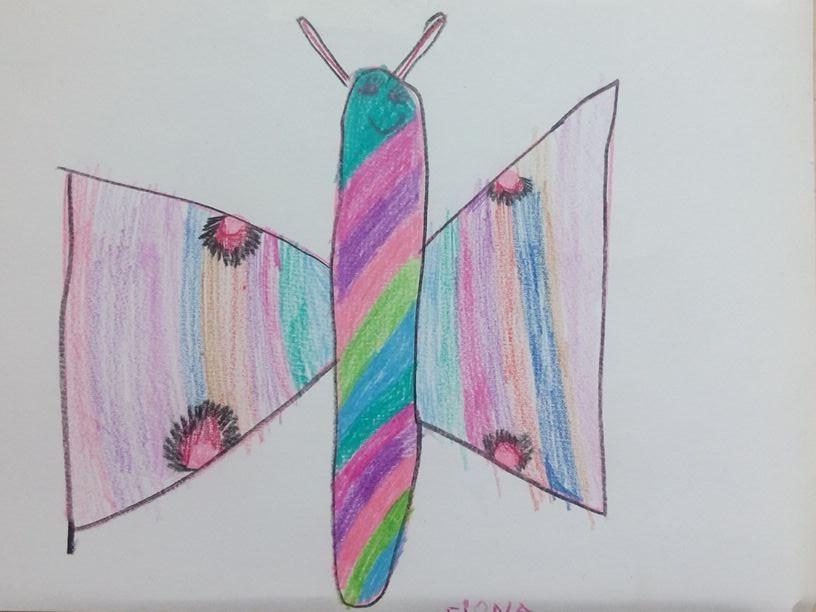 Patricia - ein Schmetterling