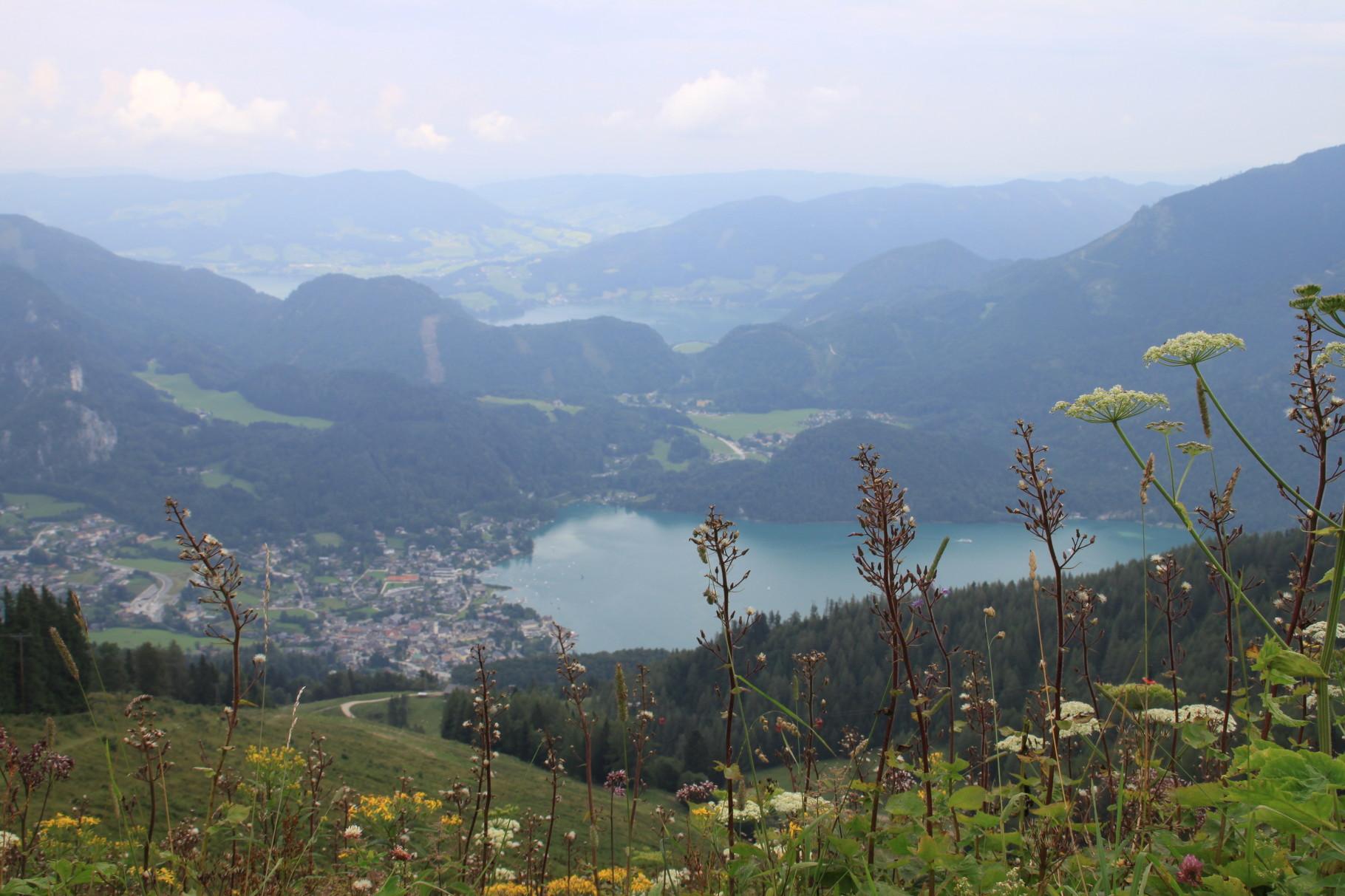 Blick zum Wolfgangsee, im Hintergrund Atter- und Mondsee