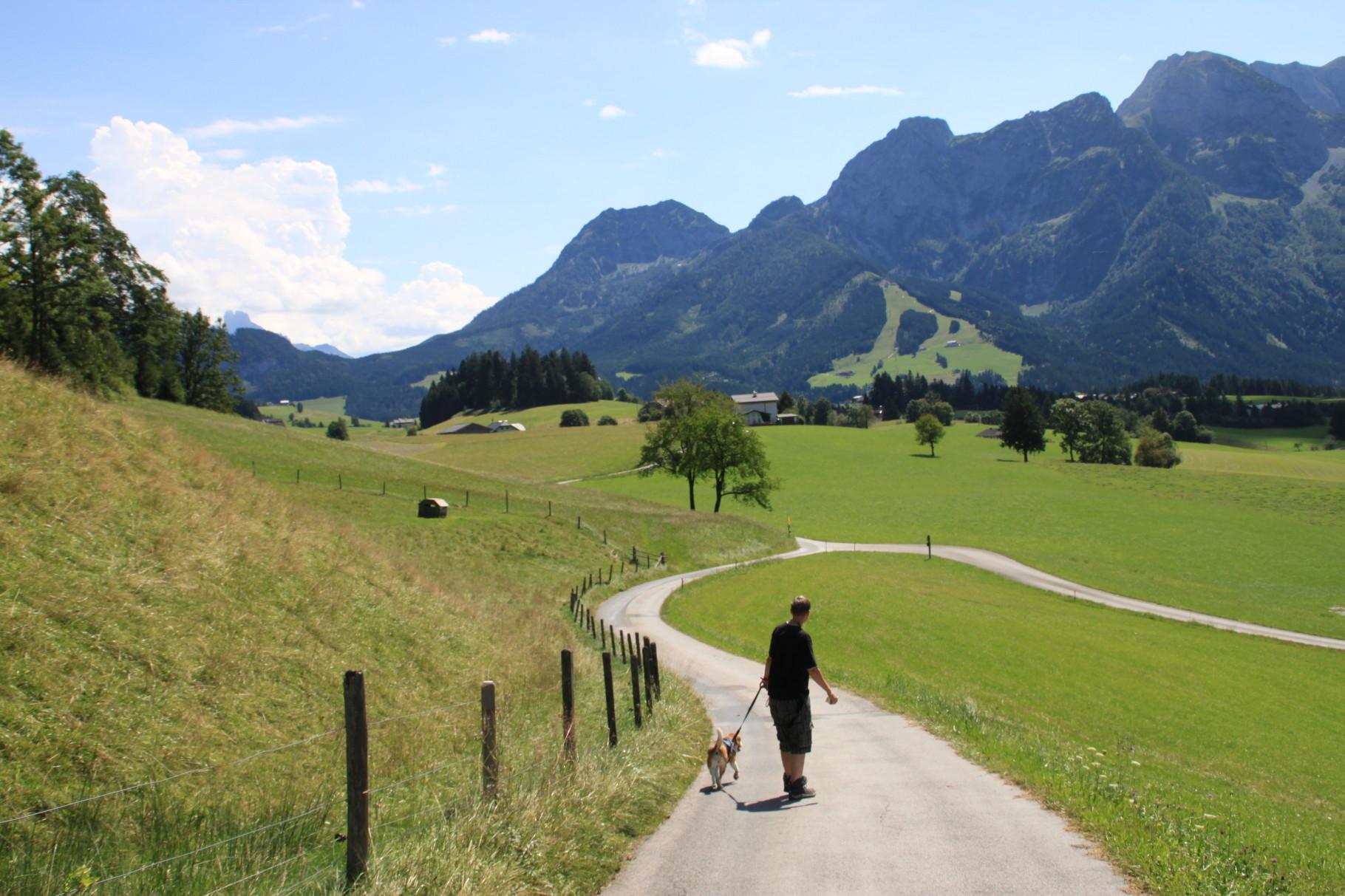 in Abtenau