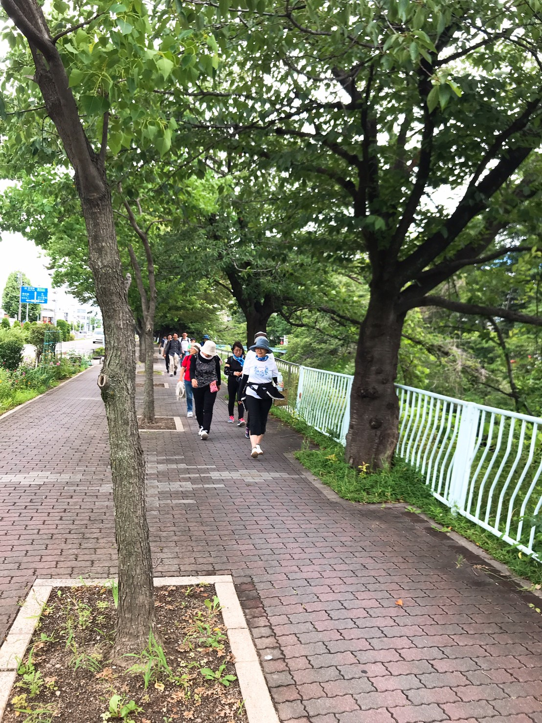 初めて公園の外周を歩いてみました^^