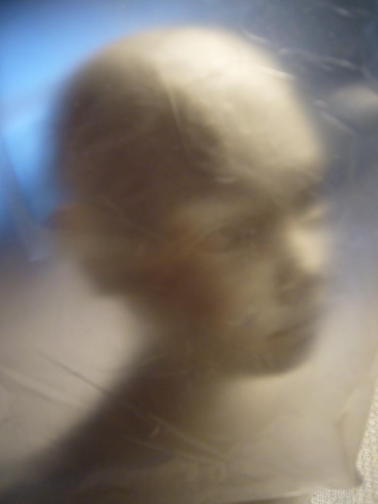 Büste LUNA aus Plastillin