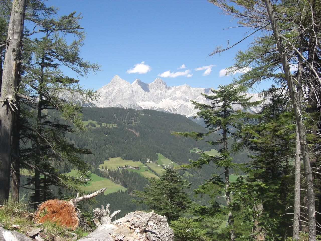 Blick vom Predigtstuhl - unserem Hausberg - auf das Dachsteinmassiv