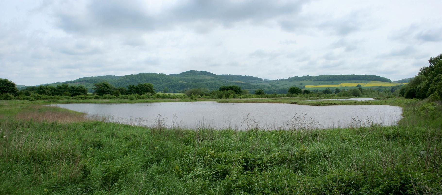Flutmulde bei Hochwasser (Foto: Stefanie Beyer)