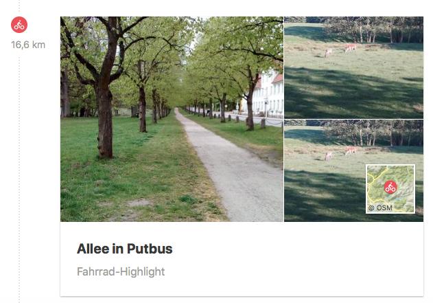 Wildgehege mit weißem Hirsch in Putbus