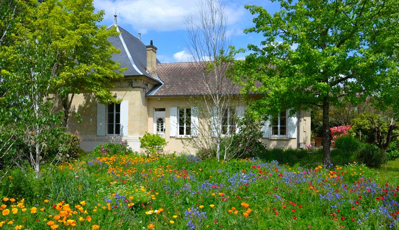Flowering fallow devant LA GANNE