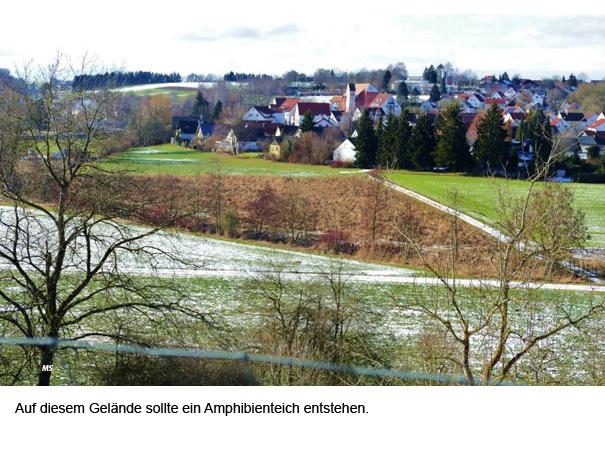 Talstrasse Staig