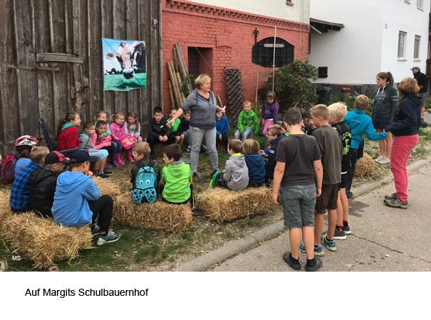 Margits Schulbauernhof in Staig Essendorf