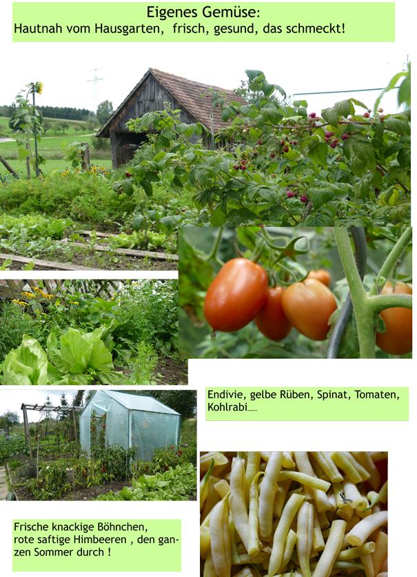 Eigenes Gemüse