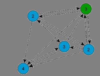 Shared Leadership Team Netzwerk