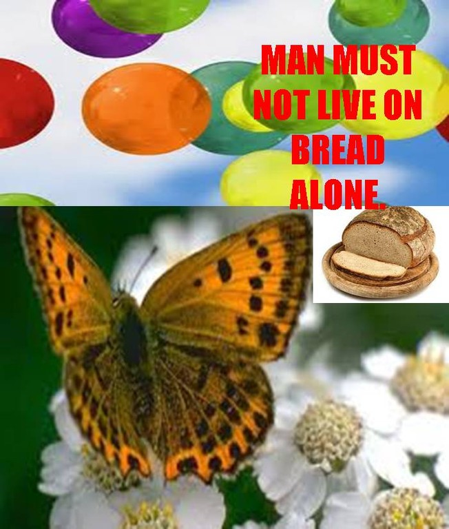 We must live on bread alone let us ponder on his love for us