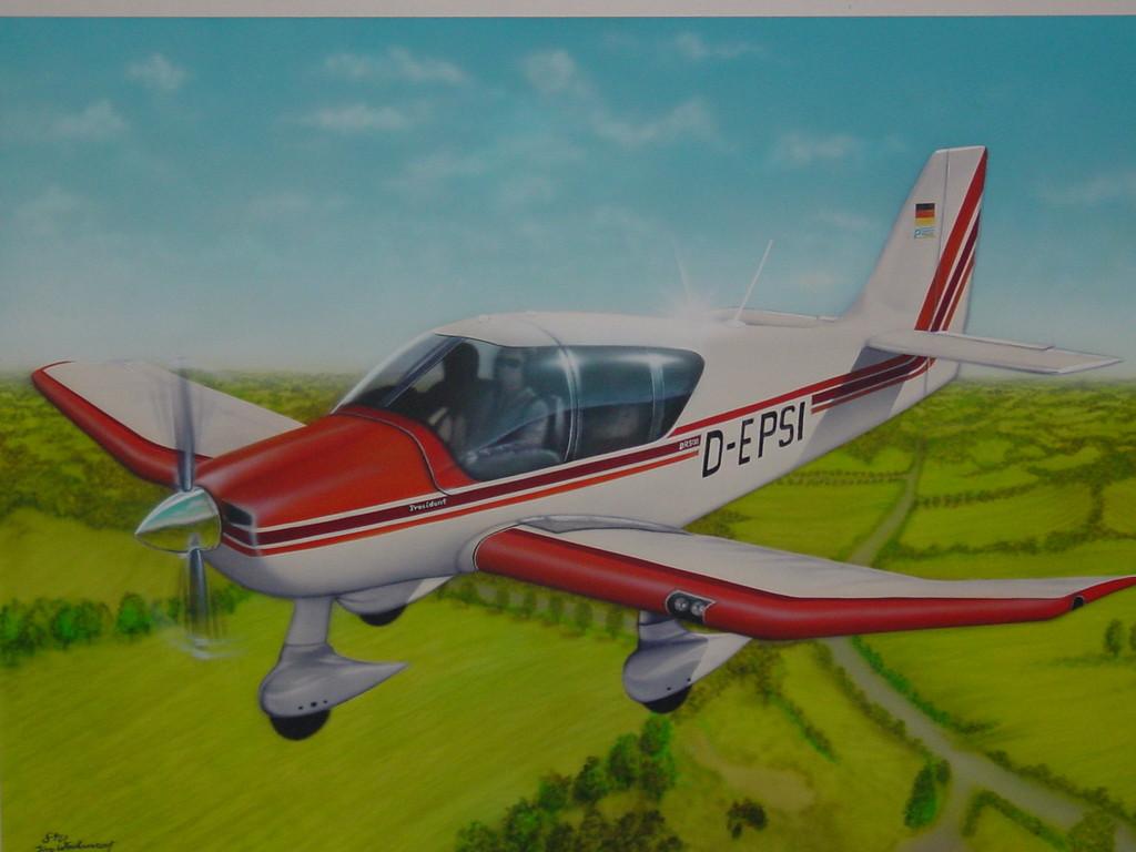 """Airbrush Wandbild """"Flugzeug Robin"""""""