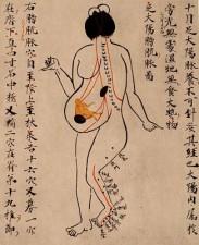Shiatsu für Schwangere in Kehl