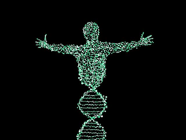 ©Apointy 免疫系と内分泌系と代謝との複合関係モデルに基づく栄養学の構築 写真はイメージ photo Elias Sch., Pixabay