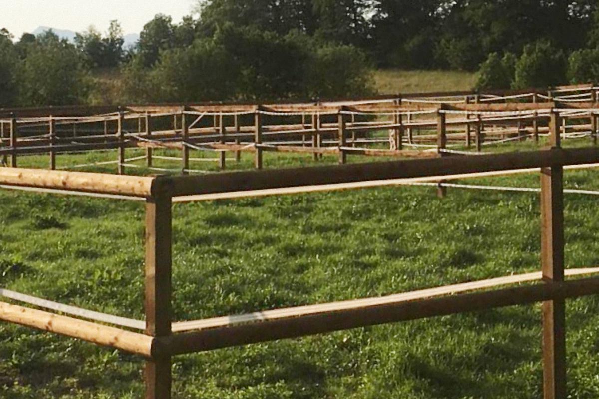 Pferdepadock mit Halbrundlatten und Breitbandzaun