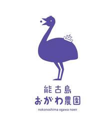7/3(土)ブルーベリー園オープン♪おがわ農園@能古島♪