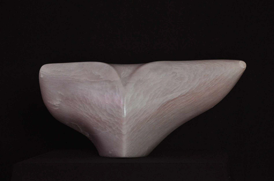 Rosa Flügel