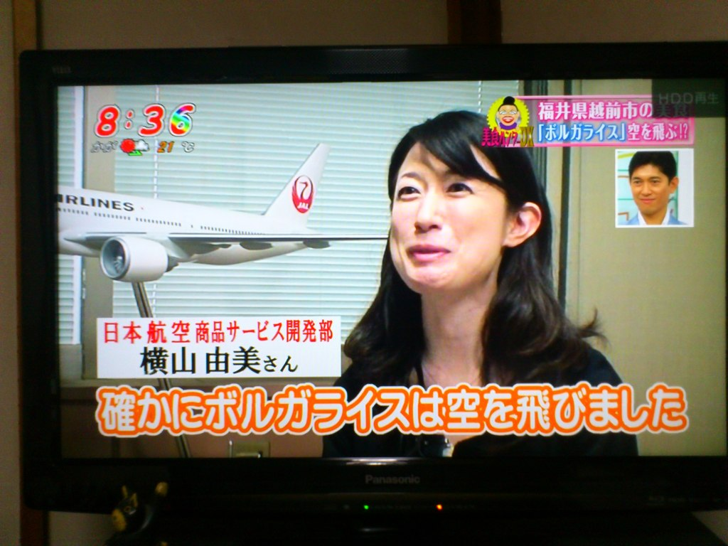 JAL担当者
