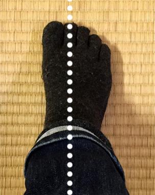 (写真1) 第二趾の下に直線があるイメージで