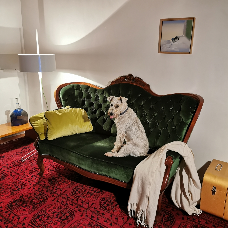 Sofa für alle.