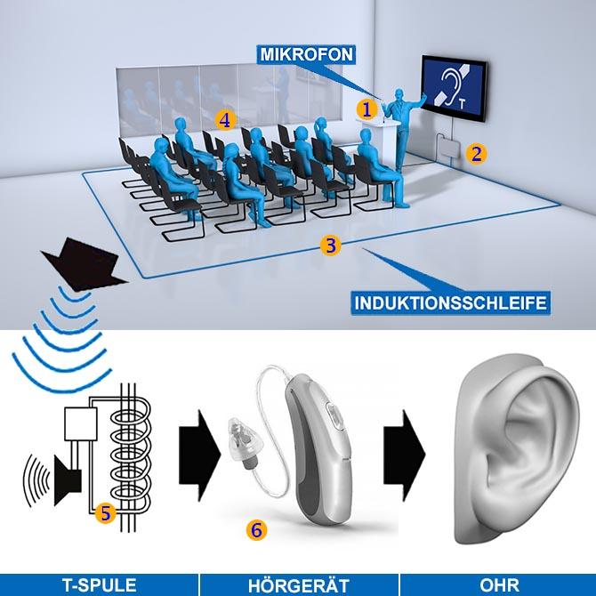 Mikrofon oder Beschallungsanlagen Signal kommt in den Ringleitungsverstärker. Der Verstärker betreibt die Induktionsschleife. Diese erzeugt ein Magnetfeld. Die T-Spule des Hörgerät wandelt dieses in ein Audiosignal zurück und überträgt das Signal ins Ohr.