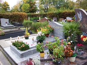 フランスの墓地は花鉢でにぎわう。(10月初旬撮影)