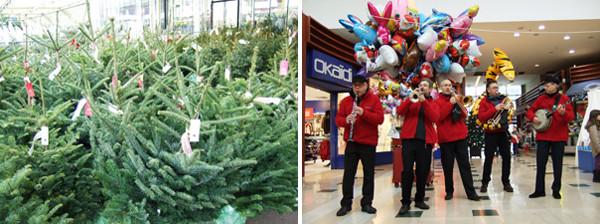 左:フランス中でX'mas用のモミの木が大量に売り出される 右:ショッピングモールに出てくるX'mas楽隊