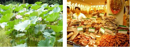 ▲左)人民公園の蓮の花 、右)乾物屋さん。腸詰めと干しえび購入。