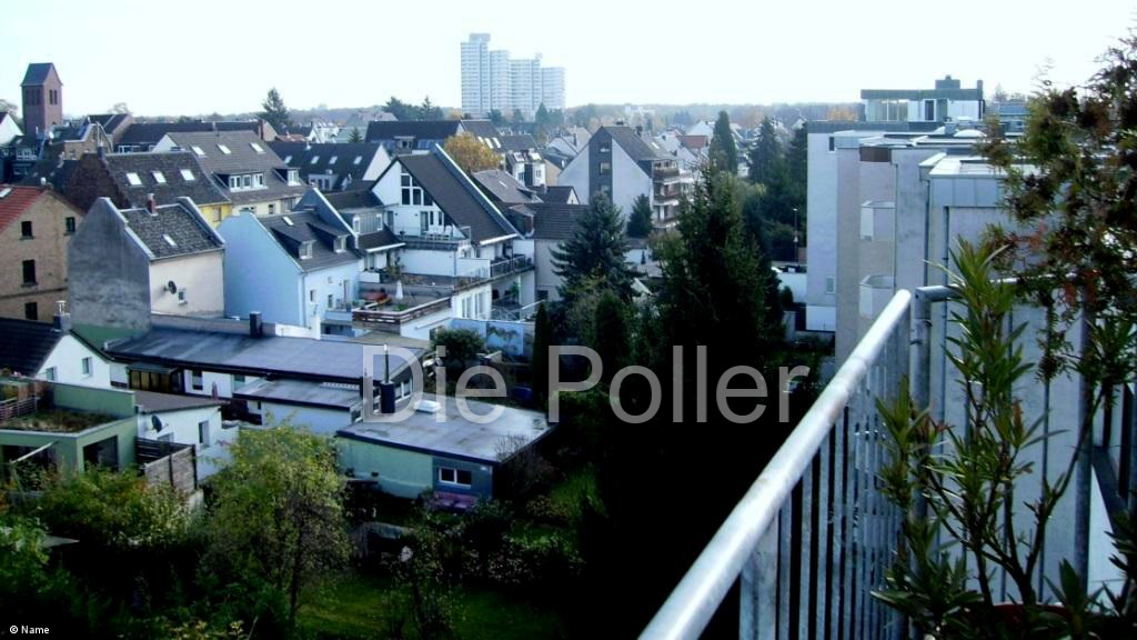 Poll am Rhein
