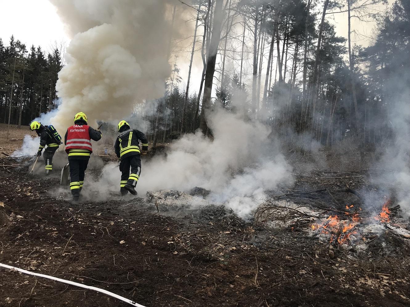 Verordnung zur Vermeidung von Waldbränden