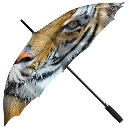 351 Tigre
