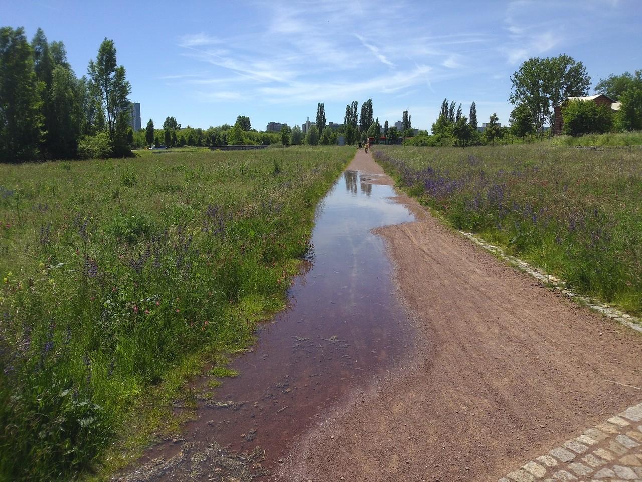 Park zwischen Heide-Süd Gimmritzer Damm und Neustadt das Wasser drückt durch den Damm