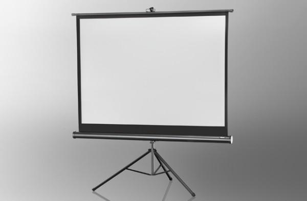 Stativleinwand Economy - Stativbildwand mit schwarzem oder weißen Gehäuse - Celexon