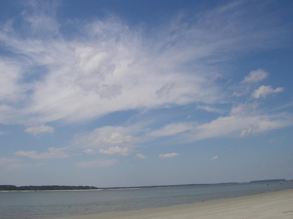 et les dauphins qui balayent l'horizon!